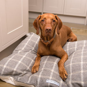 Luxury Tweed Pillow Dog Beds - dogs