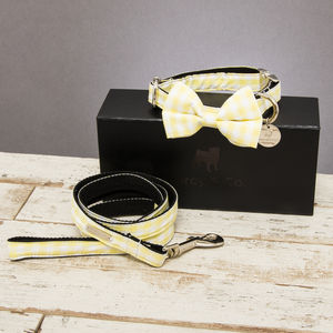 The Hampstead Yellow Dog Collar Bow Tie And Lead Set - pet collars