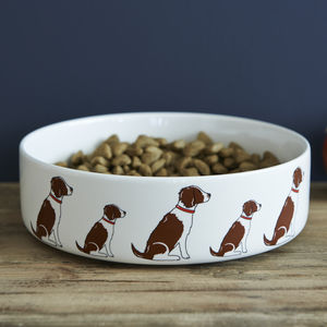 Liver And White Springer Spaniel Dog Bowl