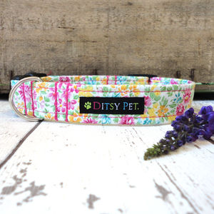 Bella Floral Dog Collar - more