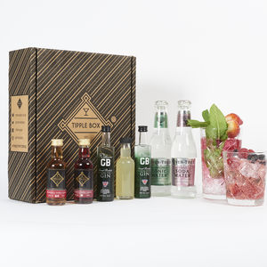 Gin Fizz Cocktail Set - wines, beers & spirits