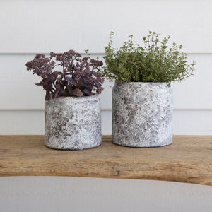 Ceramic Textured Plant Pot