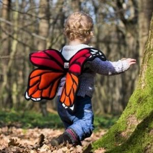 Children's Butterfly Wings Costume