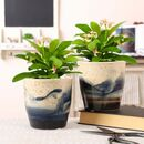 Two Hand Painted Ceramic Wave Planters