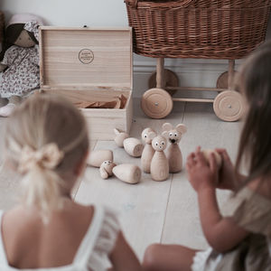Natural Wooden Skittles In Box - our top new picks