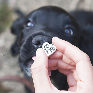 Personalised Pet Paw Print Silver Charm - pet lover