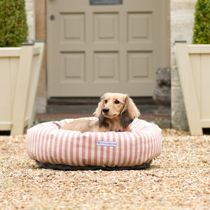 Stripe Brushed Cotton Dog Beds - beds & sleeping