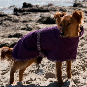 Towelling Dog Coat And Mini Towel - dogs