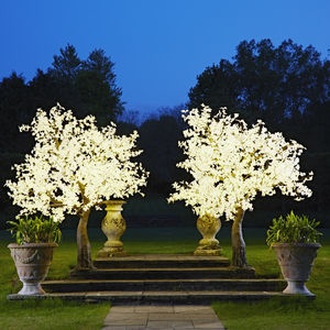 Grande LED Maple Tree - new in garden