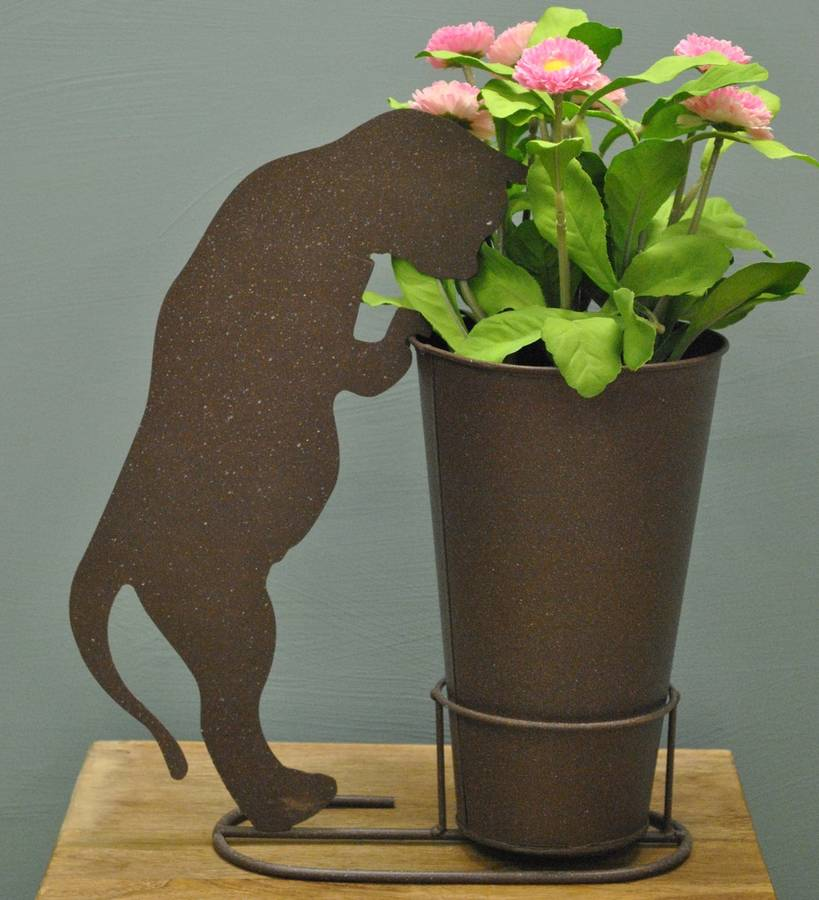 Curious Cat Plant Pot By Garden Selections