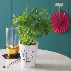 Personalised Grow Your Own Mojito Kit - gardening
