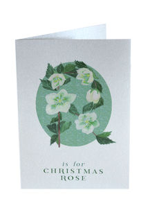 Silver Christmas Card Christmas Rose - cards