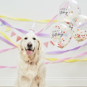 Happy Birthday Pet Party Kit For Dogs And Cats