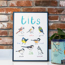 'Tits' Illustrated Bird Art Print