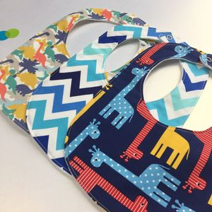 Boys Dinosaur New Baby Bib Set