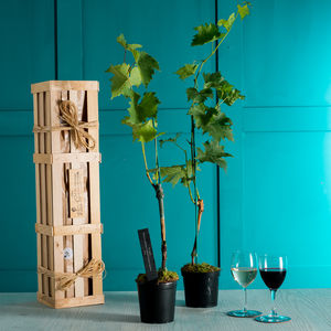 Grapevine Gift Crate - 70th birthday gifts