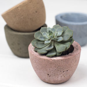 Coloured Concrete Planters