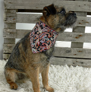 Rokabone Paisley Dog Bandana | Black And Hot Pink