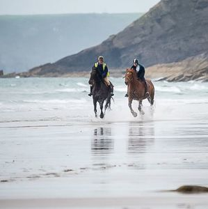 Couples Beach Horse Riding With Overnight Stay - experiences