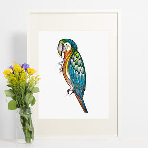 Macaw Parrot Print - children's pictures & paintings