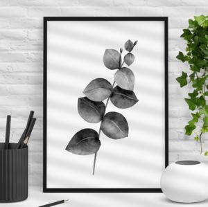 Eucalyptus Branch Black And White Botanical Print