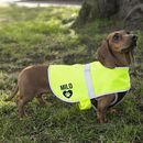 Personalised Reflective Dog Coat