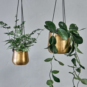 Brass Hanging Planter