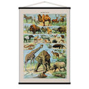 Wild Animals Print In French