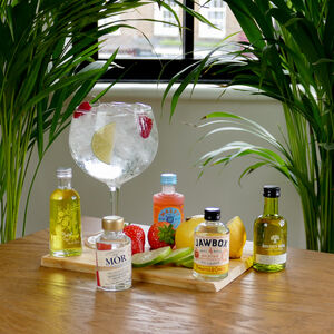 The Five Fruity Gins Tasting Gift Set