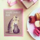Purfect Mum Cat Card