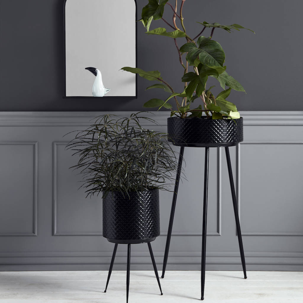 Black Scalloped Embossed Iron Planters by The Forest &Amp; Co
