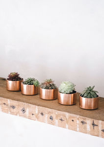 Copper Pot For Succulents, Rings Or Trinkets - jewellery boxes & storage