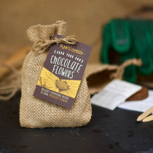 Grow Your Own Chocolate Scented Flowers Mini Kit - seeds & bulbs