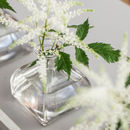 Mini Clear Bud Vase