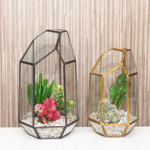 Geometric Glass Vase Terrarium - flowers, plants & vases