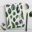 Hardback Houseplants Notebook