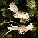 Set Of Two Feather And Bead Clip On Bird Decorations