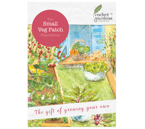 Small Veg Patch Experience Gift Voucher - gardening