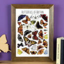 Butterflies Of Britain Wildlife Watercolour Print