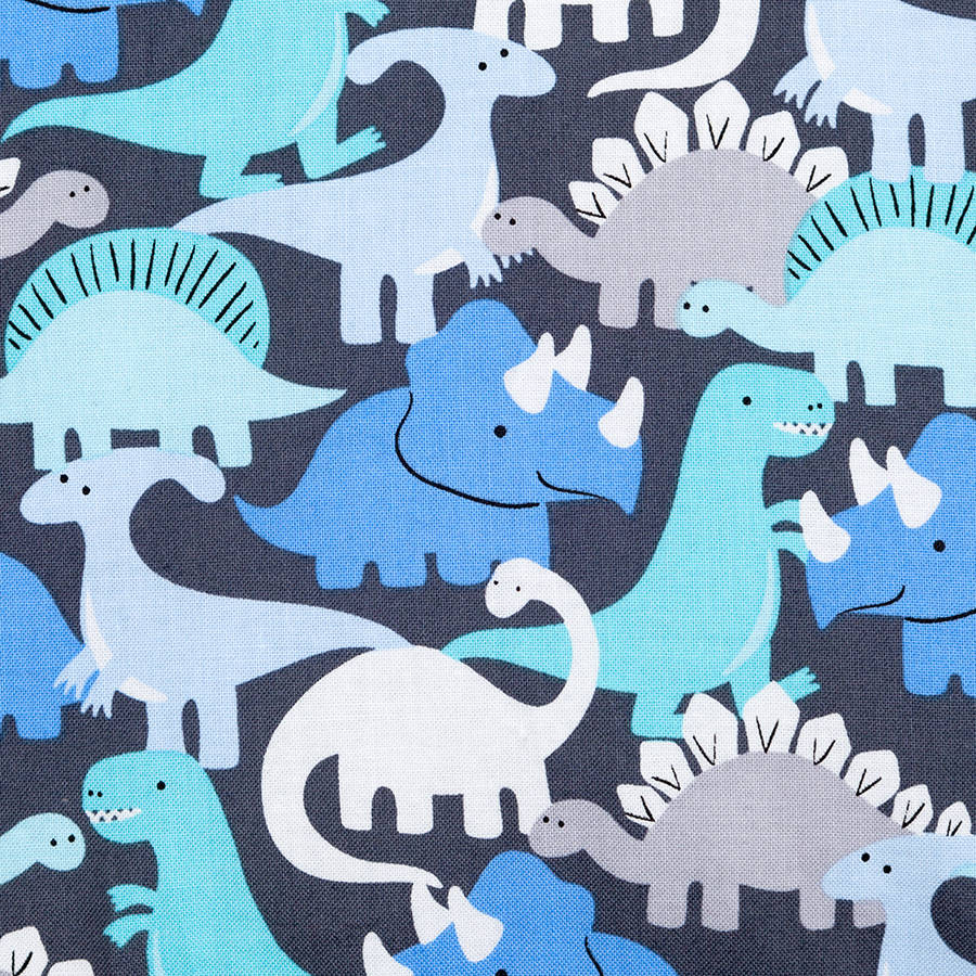Dinosaur Baby Blanket By Betty Bramble