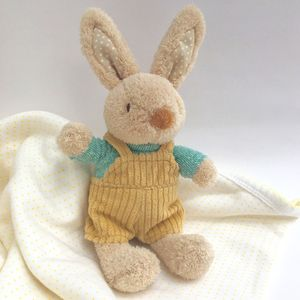 Baby Bunny Rattle Soother