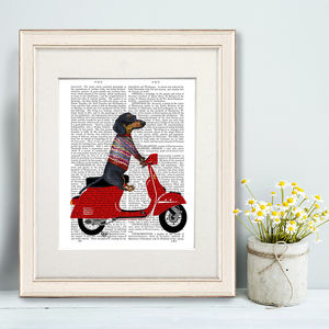 Dachshund Print, Dachshund On Moped - literature
