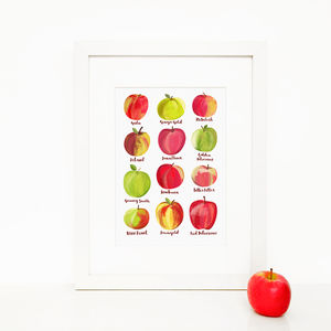Heritage Apples, Illustrated Giclée Wall Art Print