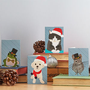 Pets Christmas Card Set - cards