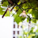 Bee And Dragonfly Solar Fairy Lights