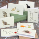 Boxed Collection Of Cat Gift Cards
