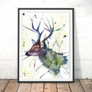 Splatter Stag Watercolour Fine Art Giclée Print