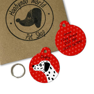 Dalmatian Personalised Dog Name ID Tag