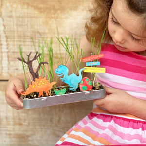 Personalised Make Your Own Dinosaur Garden