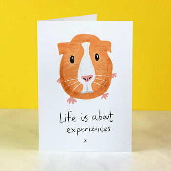 Guinea Pig Cards For New Job, Retirement, Or Graduation